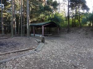 bc_市民の森③